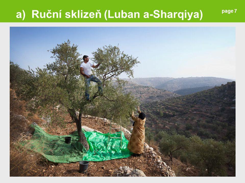 page 7 a) Ruční sklizeň (Luban a-Sharqiya)