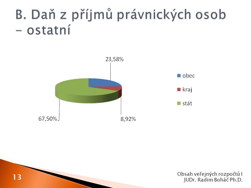 Obsah veřejných rozpočtů I JUDr. Radim Boháč Ph.D. 13