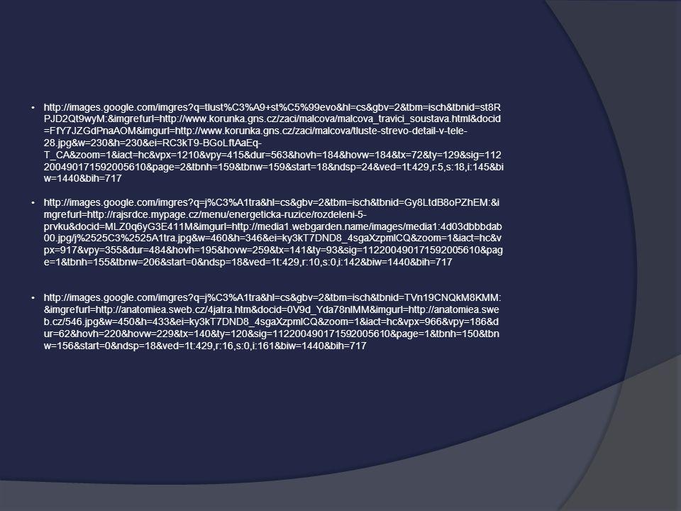 http://images.google.com/imgres?q=tlust%C3%A9+st%C5%99evo&hl=cs&gbv=2&tbm=isch&tbnid=st8R PJD2Qt9wyM:&imgrefurl=http://www.korunka.gns.cz/zaci/malcova
