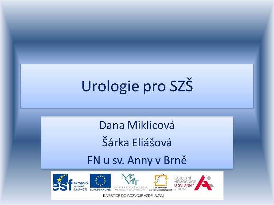 Anatomie močových cest ledviny močovody močový měchýř močová trubice www.asys.cz