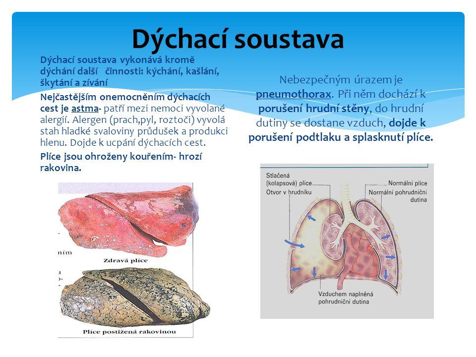 Dýchací soustava Dýchací soustava vykonává kromě dýchání další činnosti: kýchání, kašlání, škytání a zívání Nejčastějším onemocněním dýchacích cest je astma- patří mezi nemoci vyvolané alergií.