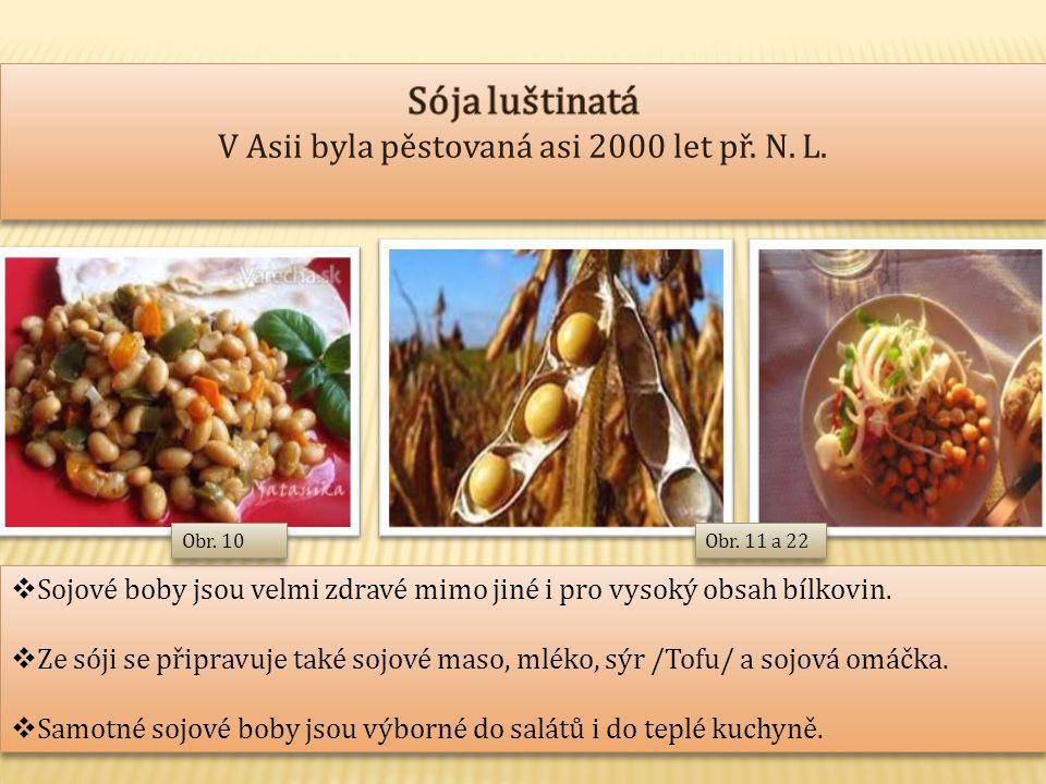  Sojové boby jsou velmi zdravé mimo jiné i pro vysoký obsah bílkovin.  Ze sóji se připravuje také sojové maso, mléko, sýr /Tofu/ a sojová omáčka. 