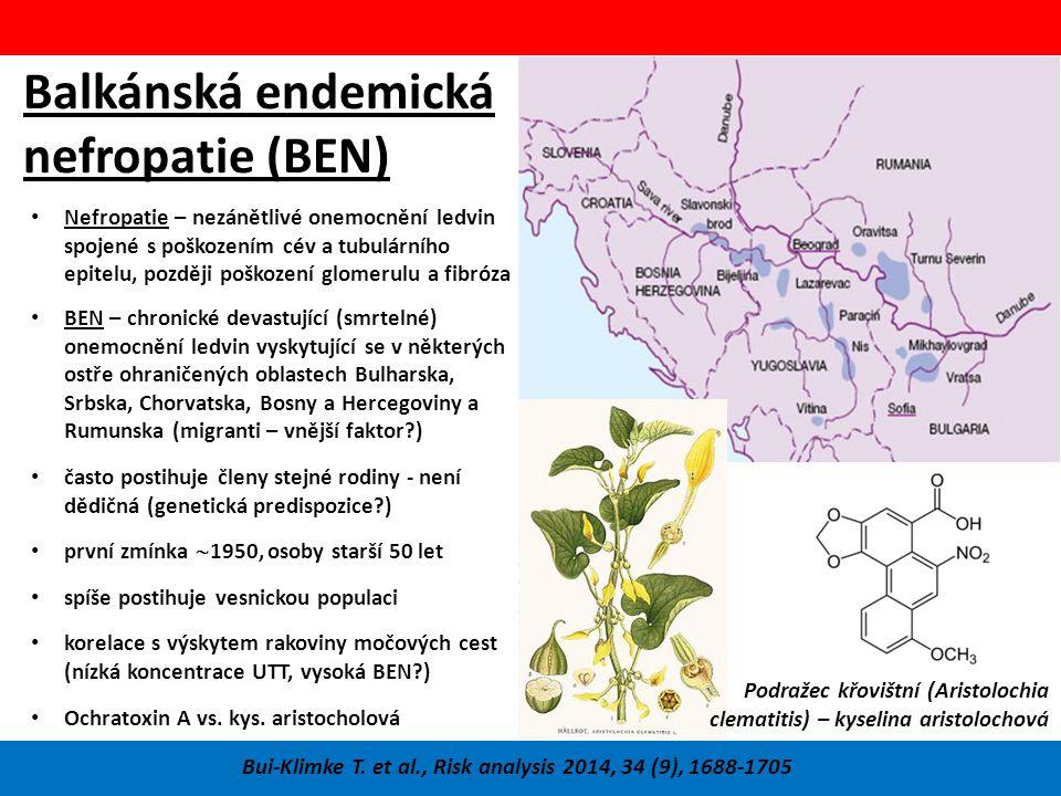 Balkánská endemická nefropatie (BEN) Bui-Klimke T.