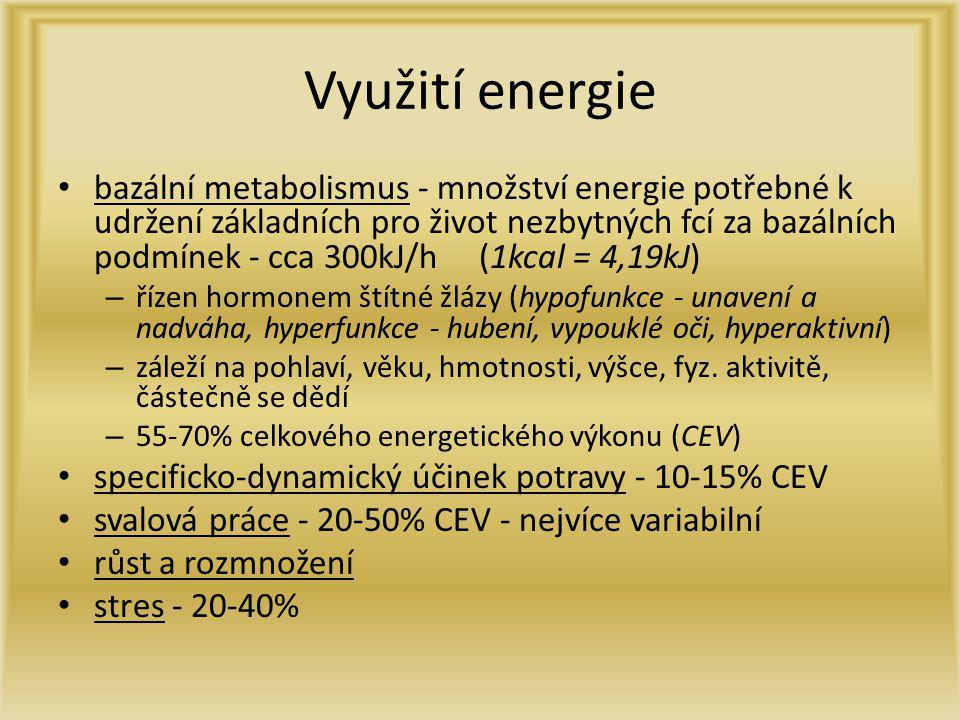 Využití energie bazální metabolismus - množství energie potřebné k udržení základních pro život nezbytných fcí za bazálních podmínek - cca 300kJ/h (1k