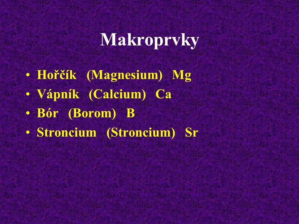 Makroprvky Hořčík (Magnesium) Mg Vápník (Calcium) Ca Bór (Borom) B Stroncium (Stroncium) Sr