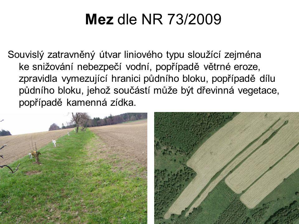 Terasa dle NR 73/2009 Souvislý svažitý útvar liniového typu tvořený terasovým stupněm, sloužící ke snižování nebezpečí vodní, popřípadě větrné eroze, a zmenšující sklon části svahu půdního bloku, popřípadě dílu půdního bloku, zpravidla vymezující hranici půdního bloku, popřípadě dílu půdního bloku, jehož součástí může být dřevinná vegetace, popřípadě kamenná zídka