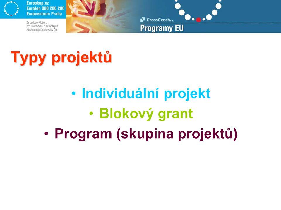 Typy projektů Individuální projekt Blokový grant Program (skupina projektů)