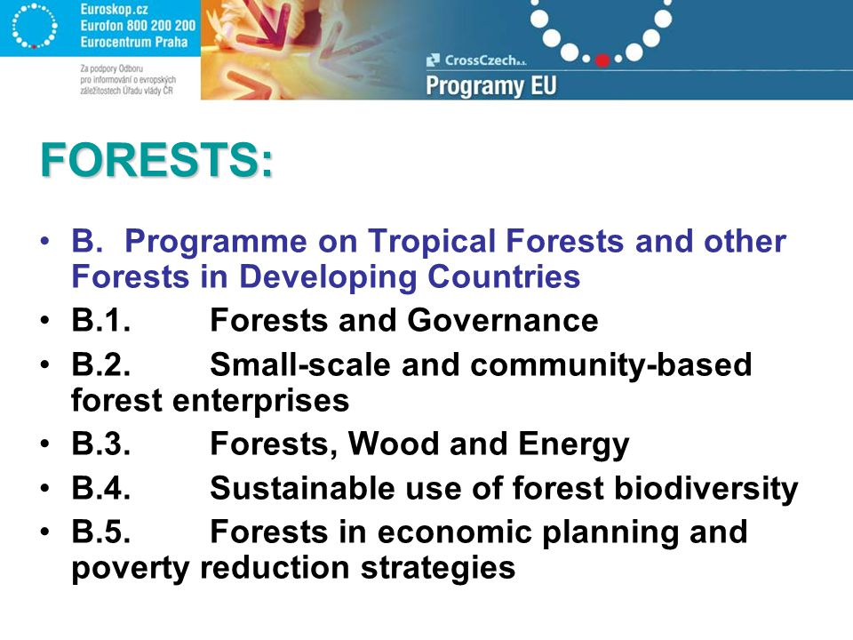 FORESTS: B.Programme on Tropical Forests and other Forests in Developing Countries B.1.Forests and Governance B.2.Small-scale and community-based forest enterprises B.3.Forests, Wood and Energy B.4.Sustainable use of forest biodiversity B.5.Forests in economic planning and poverty reduction strategies