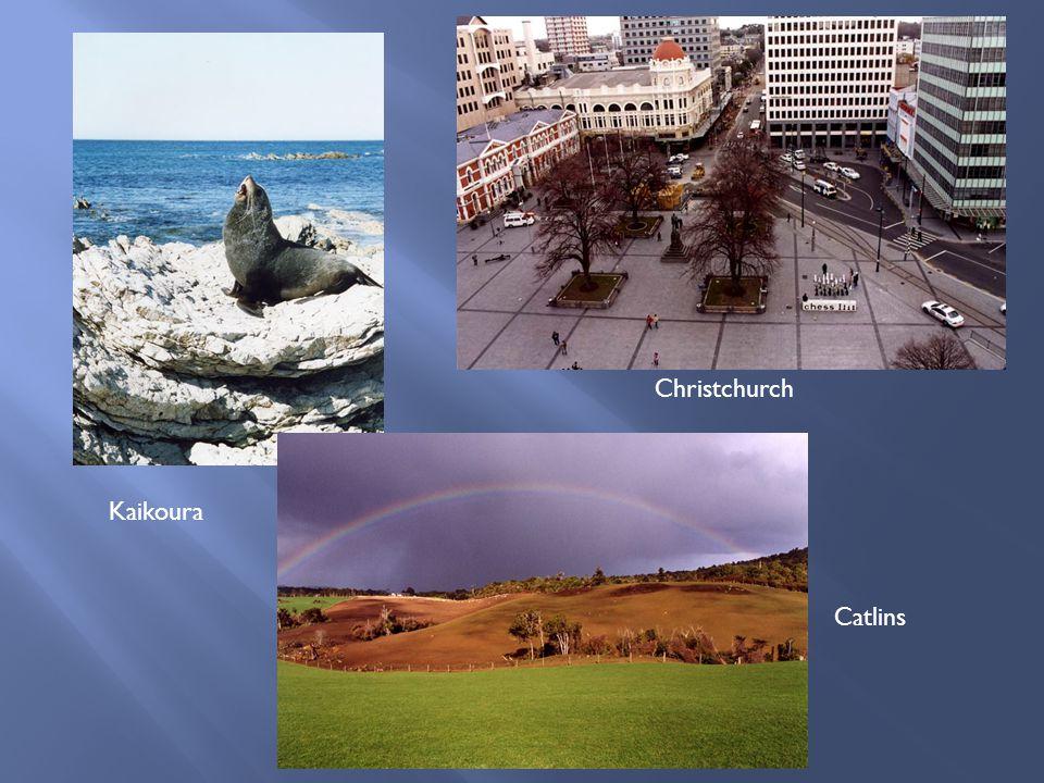 Kaikoura Christchurch Catlins