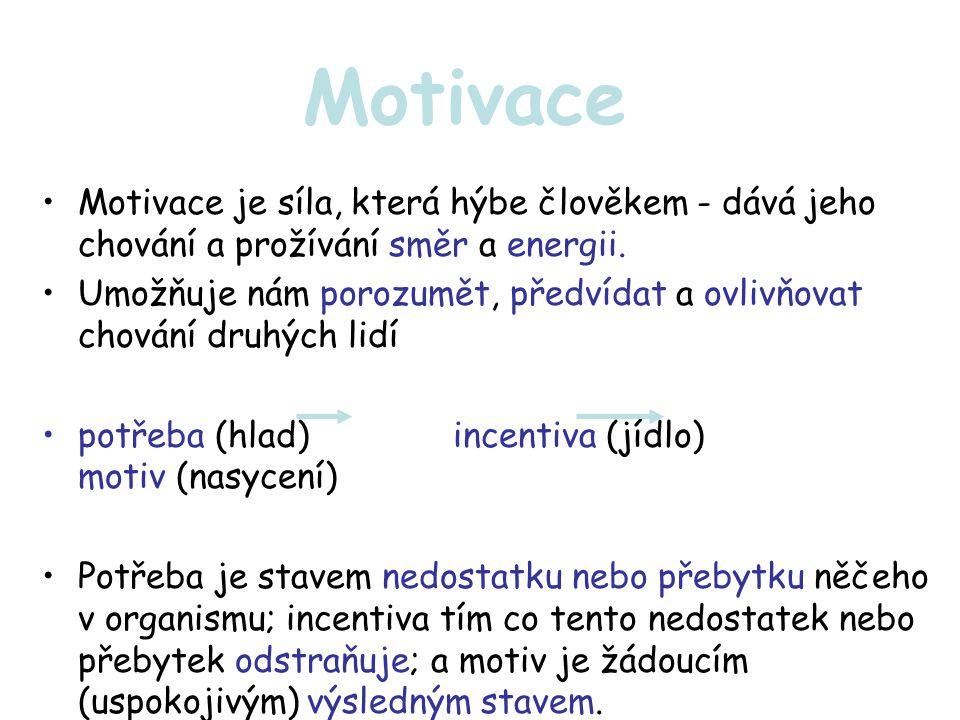 Motivace z celkového pohledu Každé chování a snažení je výslednicí několika současně působících potřeb a motivů.