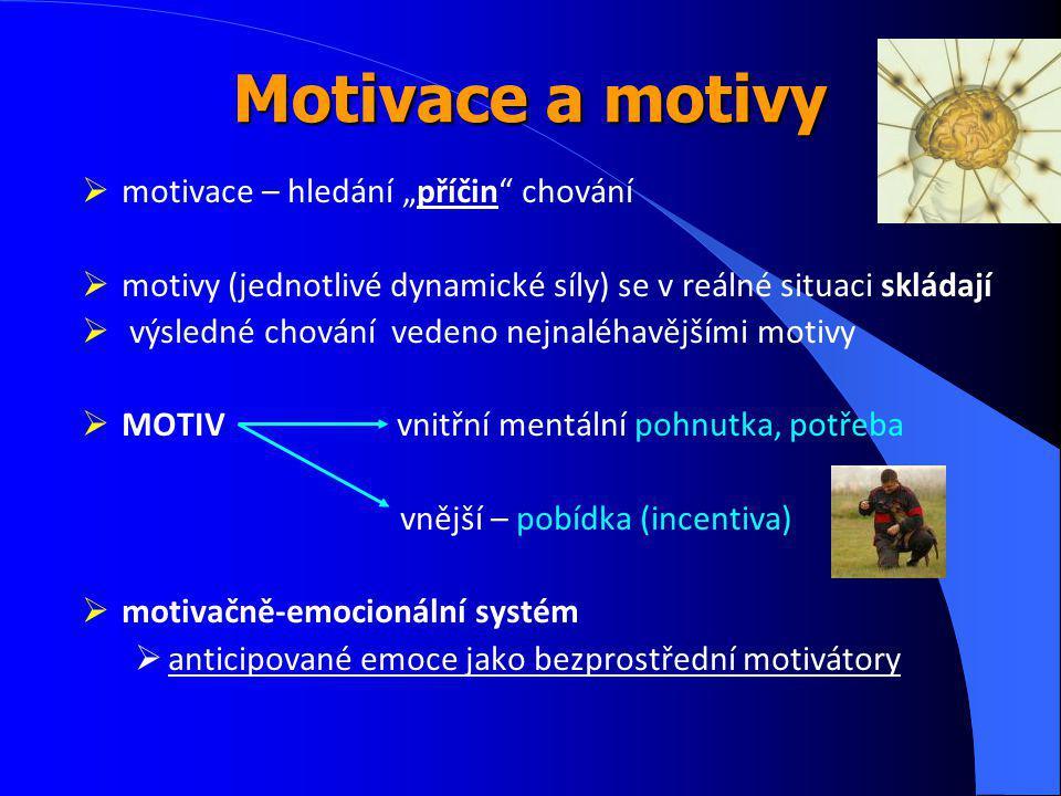 """Motivace a motivy  motivace – hledání """"příčin chování  motivy (jednotlivé dynamické síly) se v reálné situaci skládají  výsledné chování vedeno nejnaléhavějšími motivy  MOTIV vnitřní mentální pohnutka, potřeba vnější – pobídka (incentiva)  motivačně-emocionální systém  anticipované emoce jako bezprostřední motivátory"""
