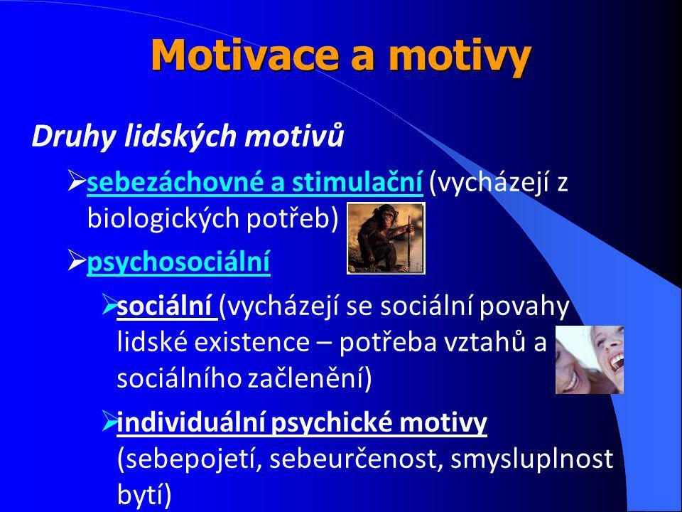 Druhy lidských motivů  sebezáchovné a stimulační (vycházejí z biologických potřeb)  psychosociální  sociální (vycházejí se sociální povahy lidské existence – potřeba vztahů a sociálního začlenění)  individuální psychické motivy (sebepojetí, sebeurčenost, smysluplnost bytí) Motivace a motivy