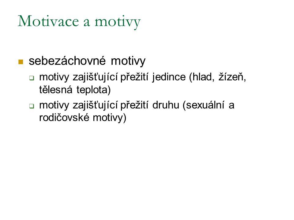 sebezáchovné motivy  motivy zajišťující přežití jedince (hlad, žízeň, tělesná teplota)  motivy zajišťující přežití druhu (sexuální a rodičovské motivy) Motivace a motivy
