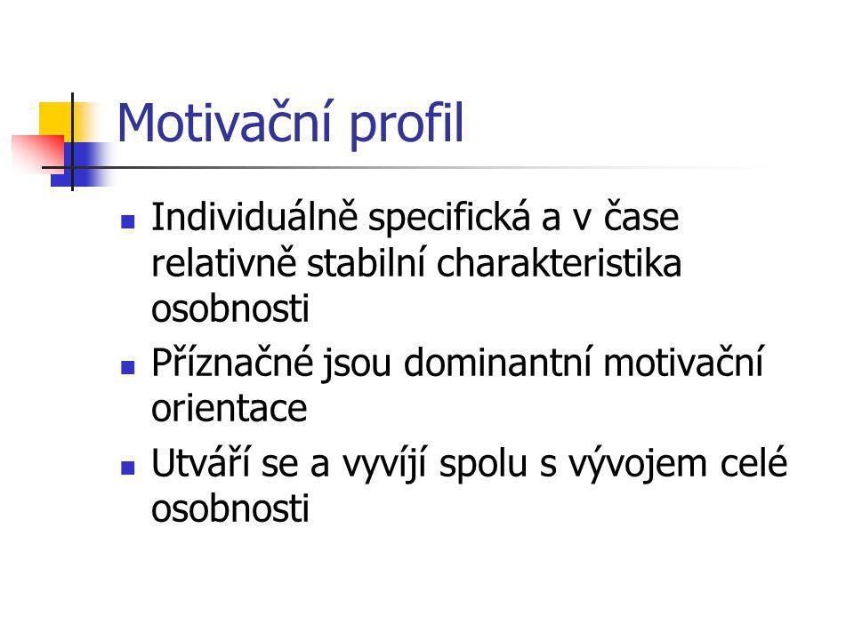 Motivační profil Individuálně specifická a v čase relativně stabilní charakteristika osobnosti Příznačné jsou dominantní motivační orientace Utváří se