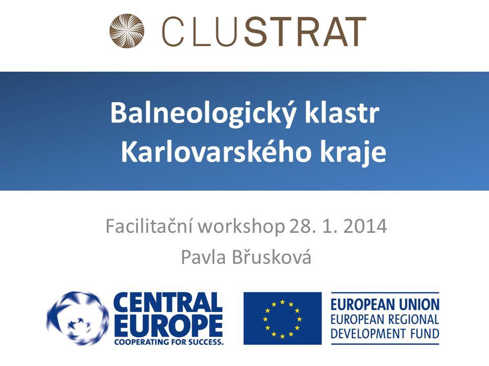 Facilitační workshop 28. 1. 2014 Pavla Břusková Balneologický klastr Karlovarského kraje