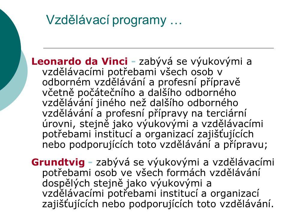 Vzdělávací programy … Leonardo da Vinci - zabývá se výukovými a vzdělávacími potřebami všech osob v odborném vzdělávání a profesní přípravě včetně počátečního a dalšího odborného vzdělávání jiného než dalšího odborného vzdělávání a profesní přípravy na terciární úrovni, stejně jako výukovými a vzdělávacími potřebami institucí a organizací zajišťujících nebo podporujících toto vzdělávání a přípravu; Grundtvig - zabývá se výukovými a vzdělávacími potřebami osob ve všech formách vzdělávání dospělých stejně jako výukovými a vzdělávacími potřebami institucí a organizací zajišťujících nebo podporujících toto vzdělávání.