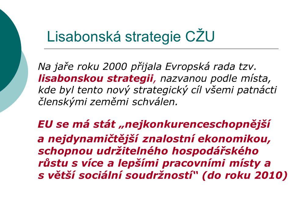 Lisabonská strategie CŽU Na jaře roku 2000 přijala Evropská rada tzv. lisabonskou strategii, nazvanou podle místa, kde byl tento nový strategický cíl