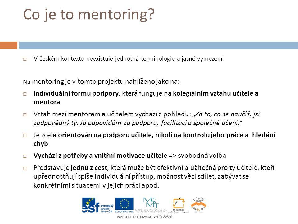 Co je to mentoring?  V českém kontextu neexistuje jednotná terminologie a jasné vymezení Na mentoring je v tomto projektu nahlíženo jako na:  Indivi