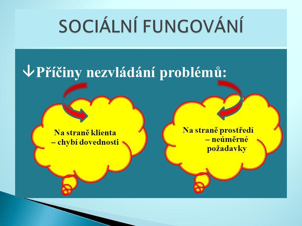 Sociální pracovník podporuje klienty, kteří se snaží řešit a přemoci problémy, ve vzájemném působení s jejich sociálním prostředím.