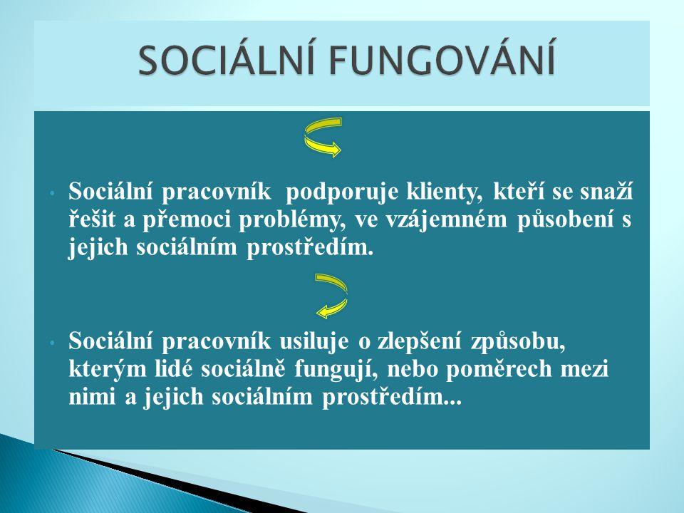 Sociální pracovník podporuje klienty, kteří se snaží řešit a přemoci problémy, ve vzájemném působení s jejich sociálním prostředím. Sociální pracovník