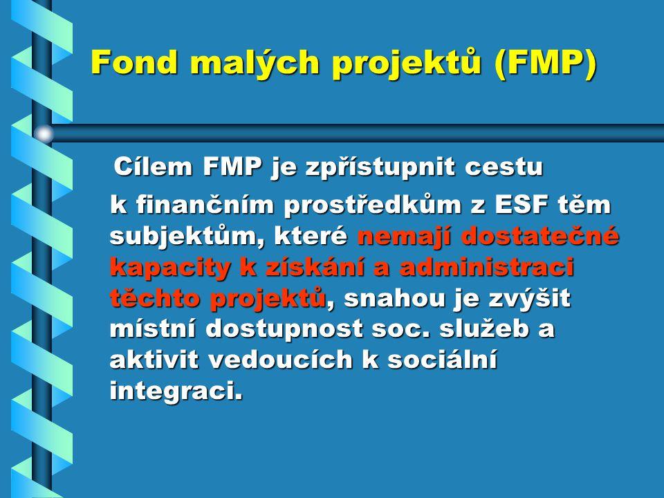 Fond malých projektů (FMP) Cílem FMP je zpřístupnit cestu Cílem FMP je zpřístupnit cestu k finančním prostředkům z ESF těm subjektům, které nemají dostatečné kapacity k získání a administraci těchto projektů, snahou je zvýšit místní dostupnost soc.