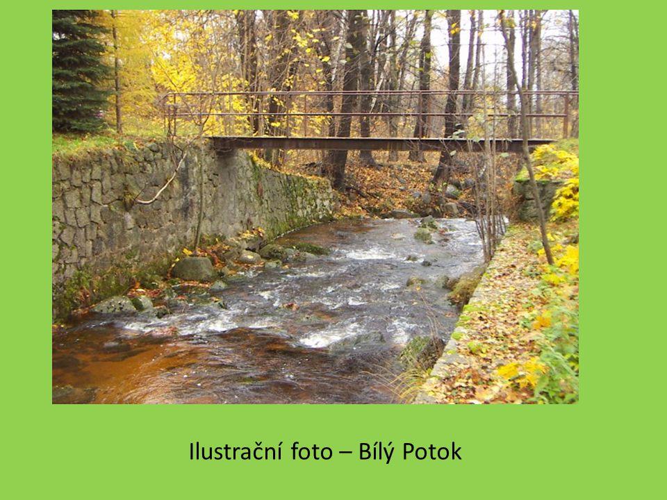 Ilustrační foto – Bílý Potok