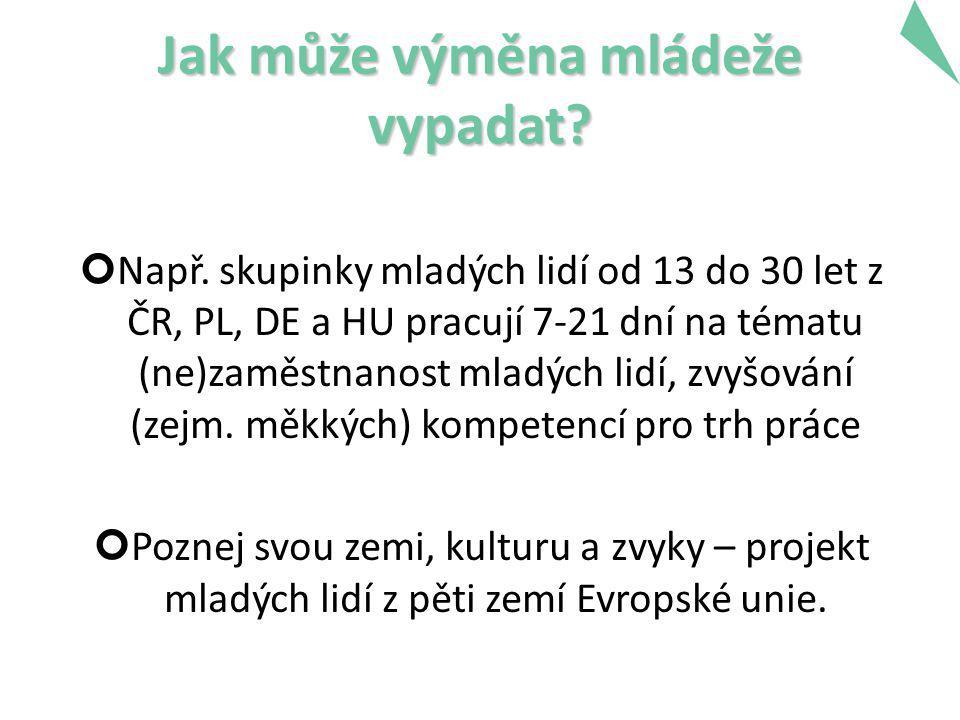 Jak může výměna mládeže vypadat? Např. skupinky mladých lidí od 13 do 30 let z ČR, PL, DE a HU pracují 7-21 dní na tématu (ne)zaměstnanost mladých lid