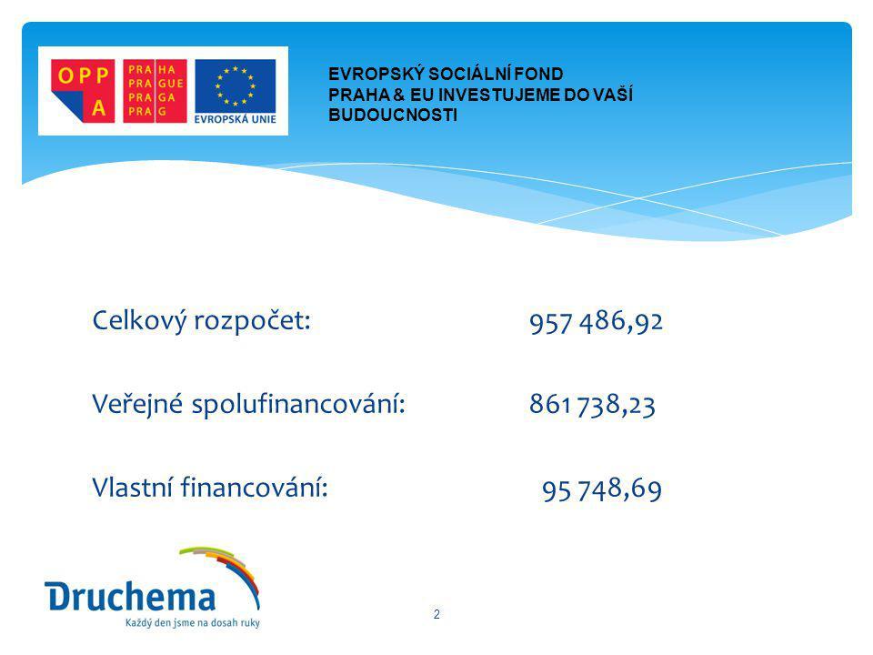 Celkový rozpočet: 957 486,92 Veřejné spolufinancování:861 738,23 Vlastní financování: 95 748,69 2 EVROPSKÝ SOCIÁLNÍ FOND PRAHA & EU INVESTUJEME DO VAŠÍ BUDOUCNOSTI