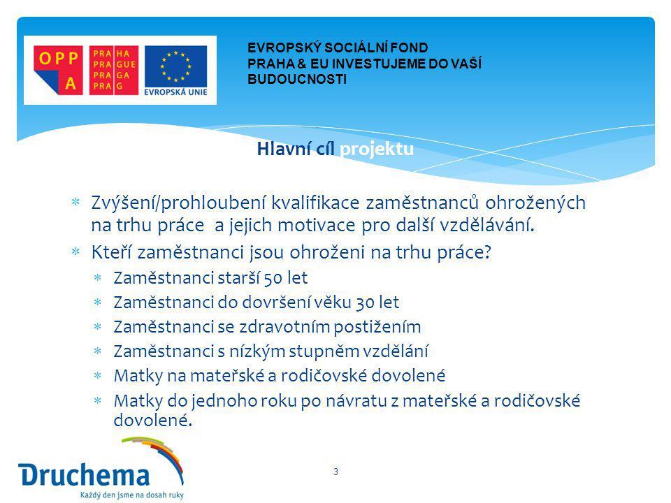-Realizační tým projektu -Manažer projektu – Ing.Jiří Daněk -Koordinátor projektu – Ing.