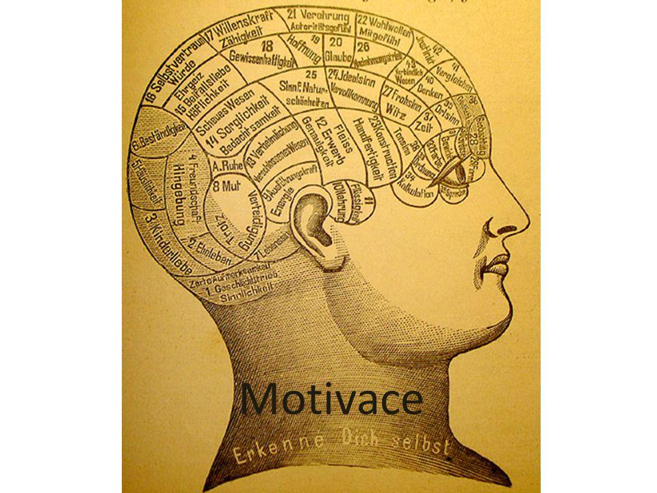 Motivační struktura – stále dispozice člověka jednat za určité situace osobitým způsobem Motivace se utváří po celý život, spolu s rozvojem osobnosti.