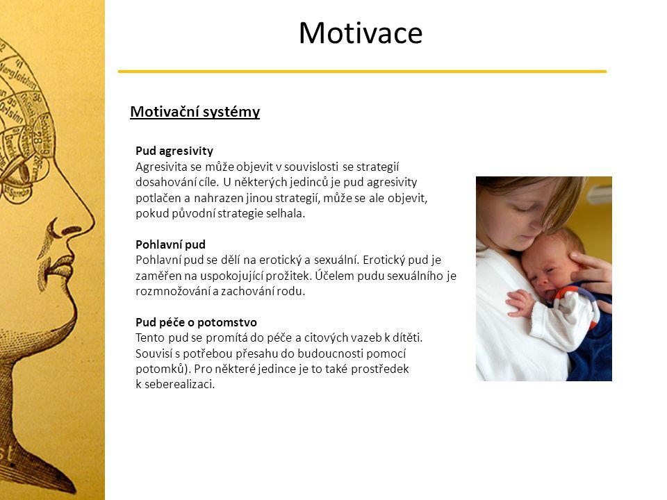 Motivace Motivační systémy Pud agresivity Agresivita se může objevit v souvislosti se strategií dosahování cíle. U některých jedinců je pud agresivity