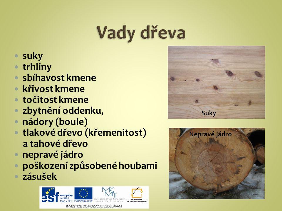 suky trhliny sbíhavost kmene křivost kmene točitost kmene zbytnění oddenku, nádory (boule) tlakové dřevo (křemenitost) a tahové dřevo nepravé jádro poškození způsobené houbami zásušek Suky Nepravé jádro