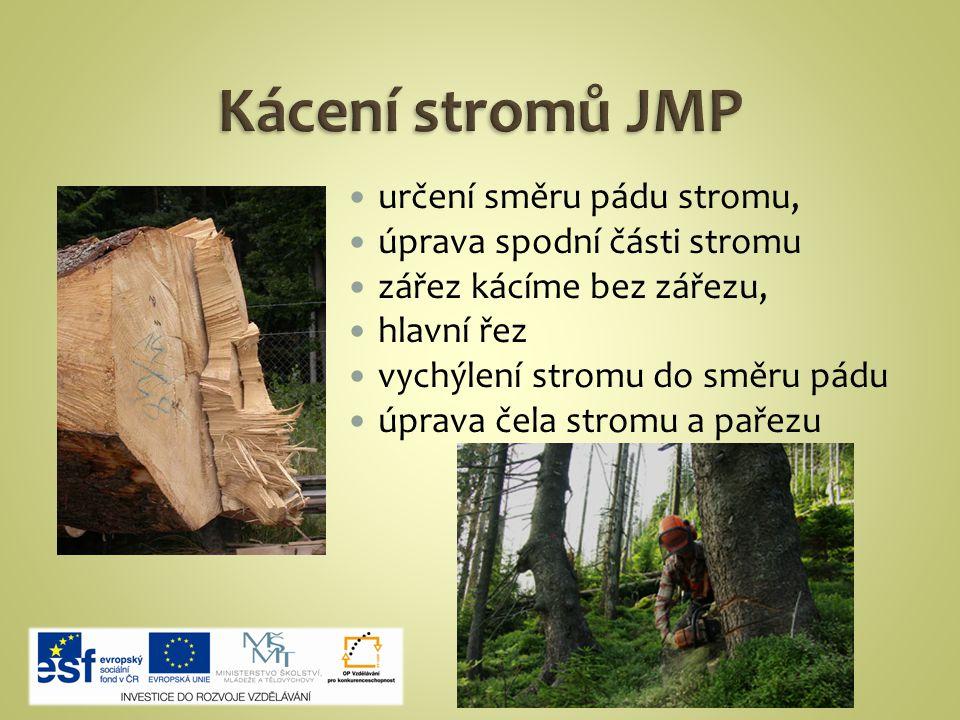 určení směru pádu stromu, úprava spodní části stromu zářez kácíme bez zářezu, hlavní řez vychýlení stromu do směru pádu úprava čela stromu a pařezu