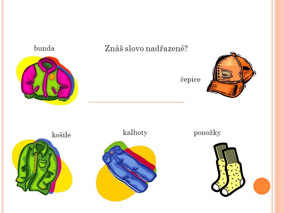 bunda čepice ponožkykalhoty košile Znáš slovo nadřazené?