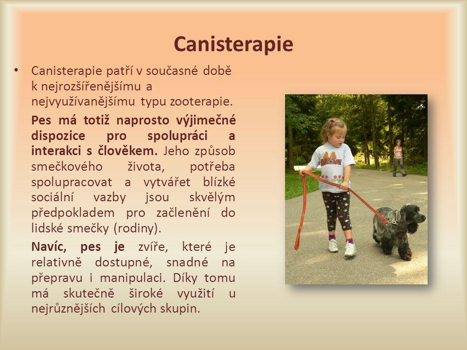 Canisterapie Canisterapie patří v současné době k nejrozšířenějšímu a nejvyužívanějšímu typu zooterapie. Pes má totiž naprosto výjimečné dispozice pro