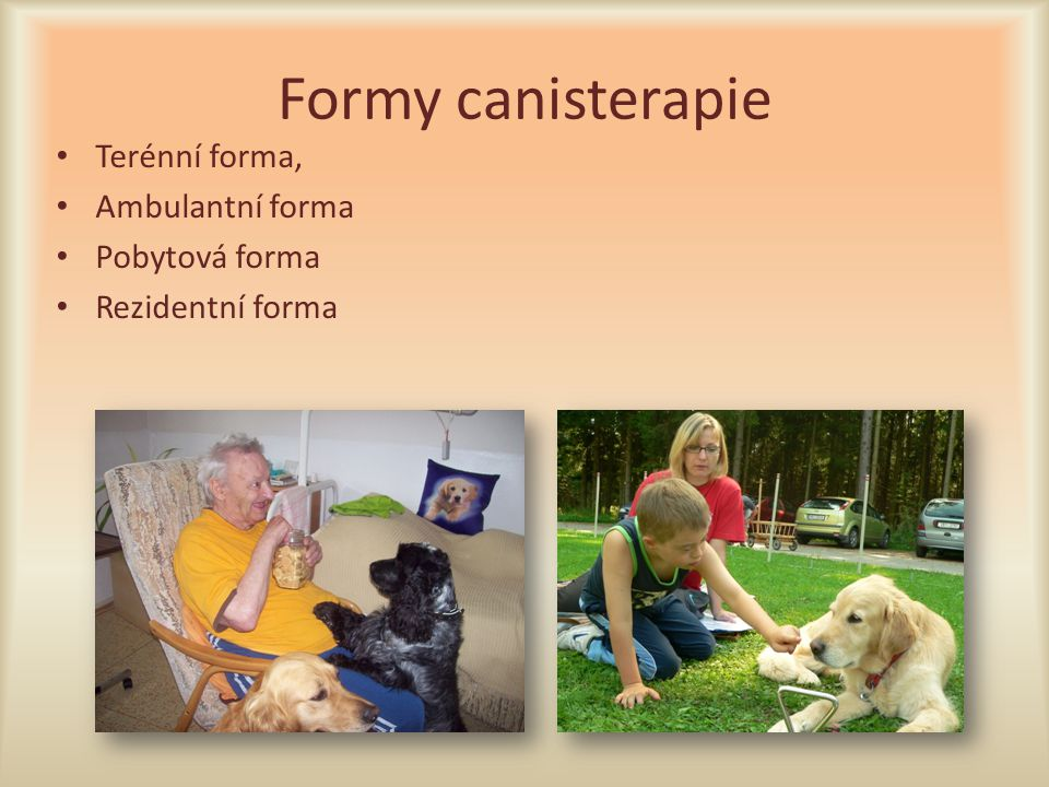 Formy canisterapie Terénní forma, Ambulantní forma Pobytová forma Rezidentní forma