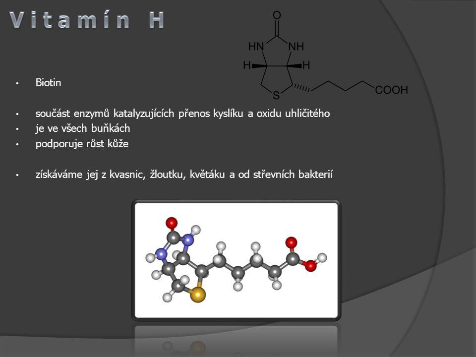 Biotin součást enzymů katalyzujících přenos kyslíku a oxidu uhličitého je ve všech buňkách podporuje růst kůže získáváme jej z kvasnic, žloutku, květá
