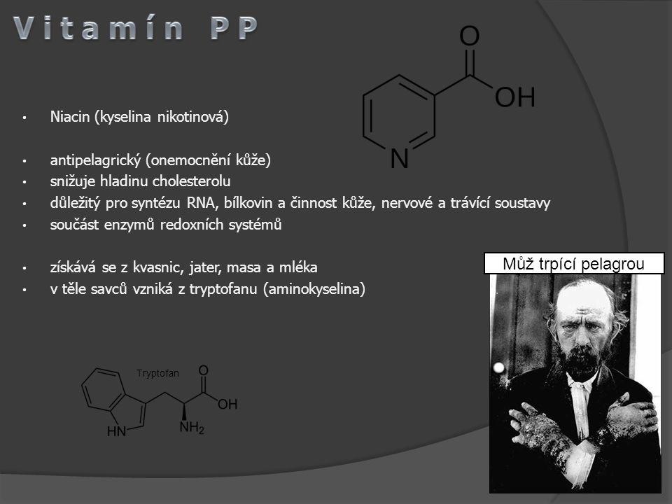 Niacin (kyselina nikotinová) antipelagrický (onemocnění kůže) snižuje hladinu cholesterolu důležitý pro syntézu RNA, bílkovin a činnost kůže, nervové