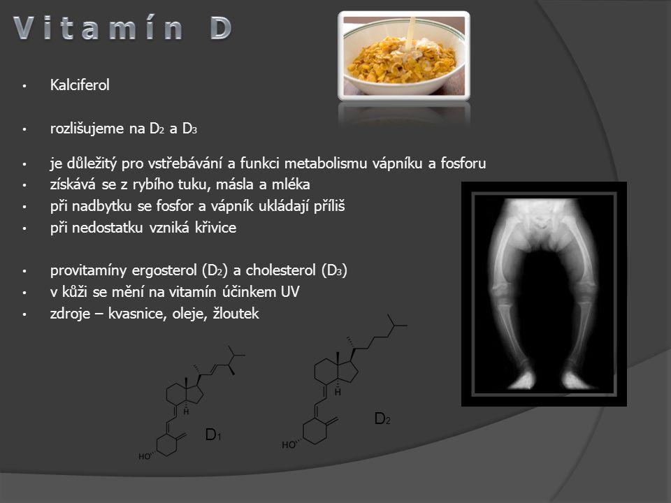 Kalciferol rozlišujeme na D 2 a D 3 je důležitý pro vstřebávání a funkci metabolismu vápníku a fosforu získává se z rybího tuku, másla a mléka při nad