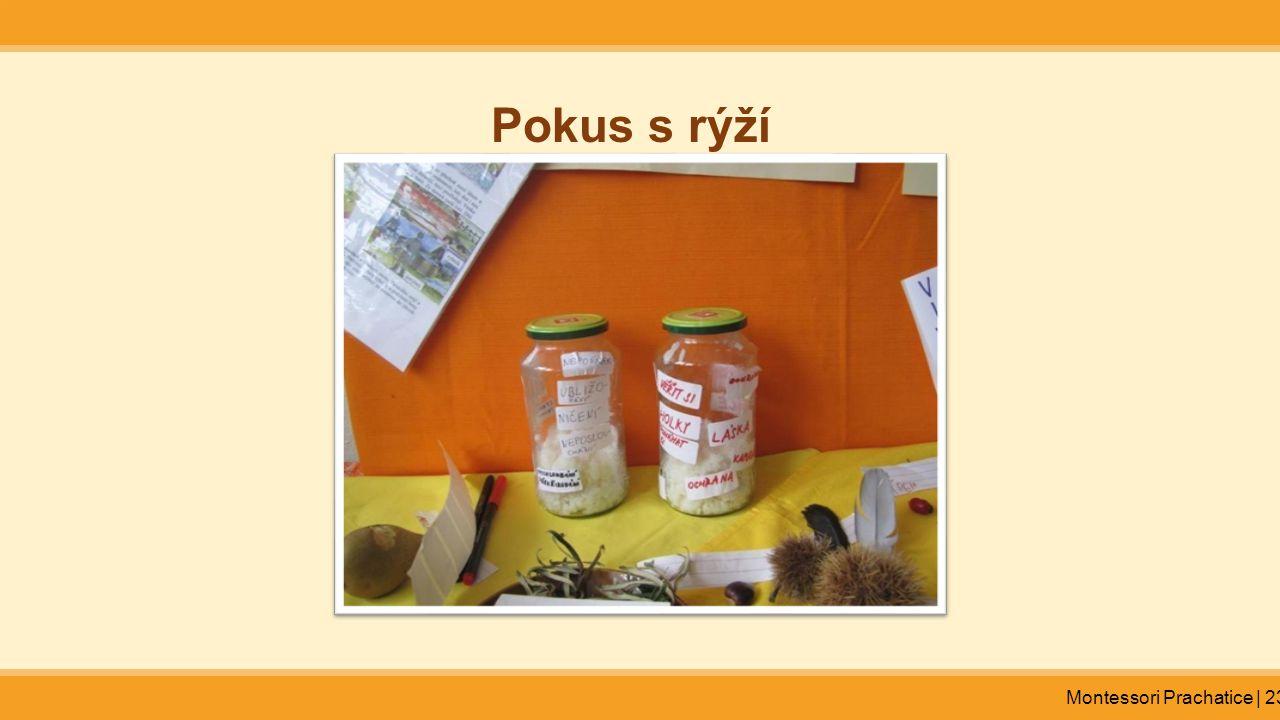 Montessori Prachatice | 23 Pokus s rýží