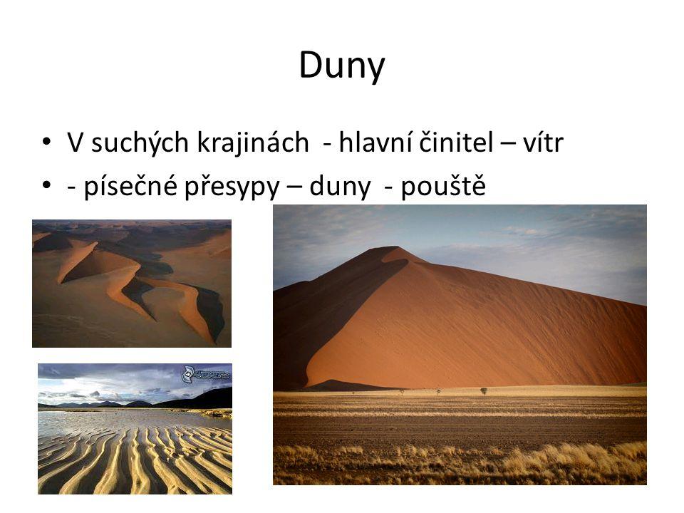 Duny V suchých krajinách - hlavní činitel – vítr - písečné přesypy – duny - pouště