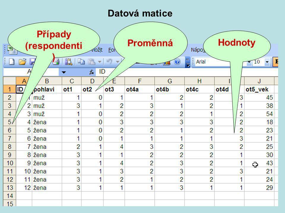 Praktikum KMVP část 24 Proměnná Případy (respondenti ) Hodnoty Datová matice