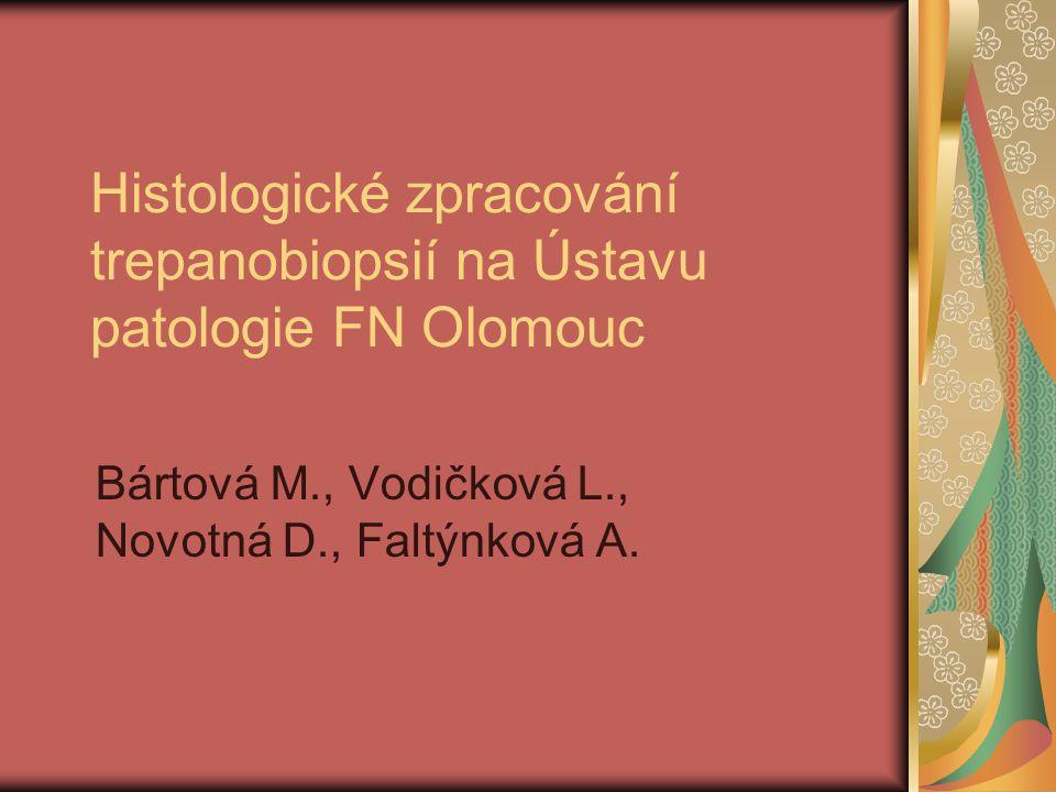 Metoda Unna-Papenheim Výsledek: cytoplazma plazmocytů – růžově červeně erytroblasty (hnízda erytropoézy) – růžově červeně