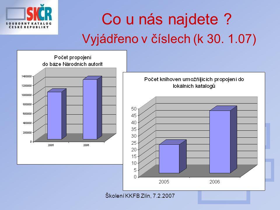 Školení KKFB Zlín, 7.2.2007 Co u nás najdete Vyjádřeno v číslech (k 30. 1.07)