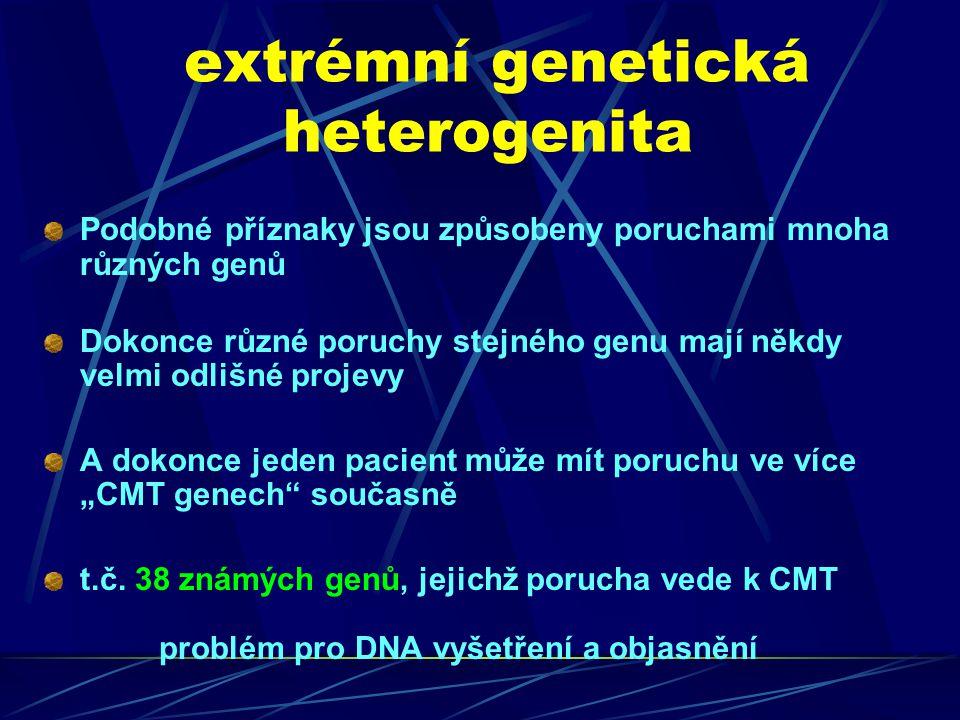 """extrémní genetická heterogenita Podobné příznaky jsou způsobeny poruchami mnoha různých genů Dokonce různé poruchy stejného genu mají někdy velmi odlišné projevy A dokonce jeden pacient může mít poruchu ve více """"CMT genech současně t.č."""