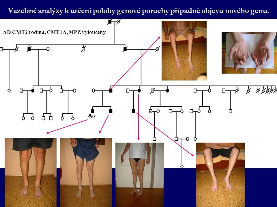 Vazebné analýzy k určení polohy genové poruchy případně objevu nového genu.