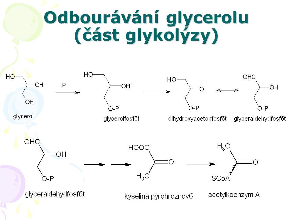 Odbourávání glycerolu (část glykolýzy)
