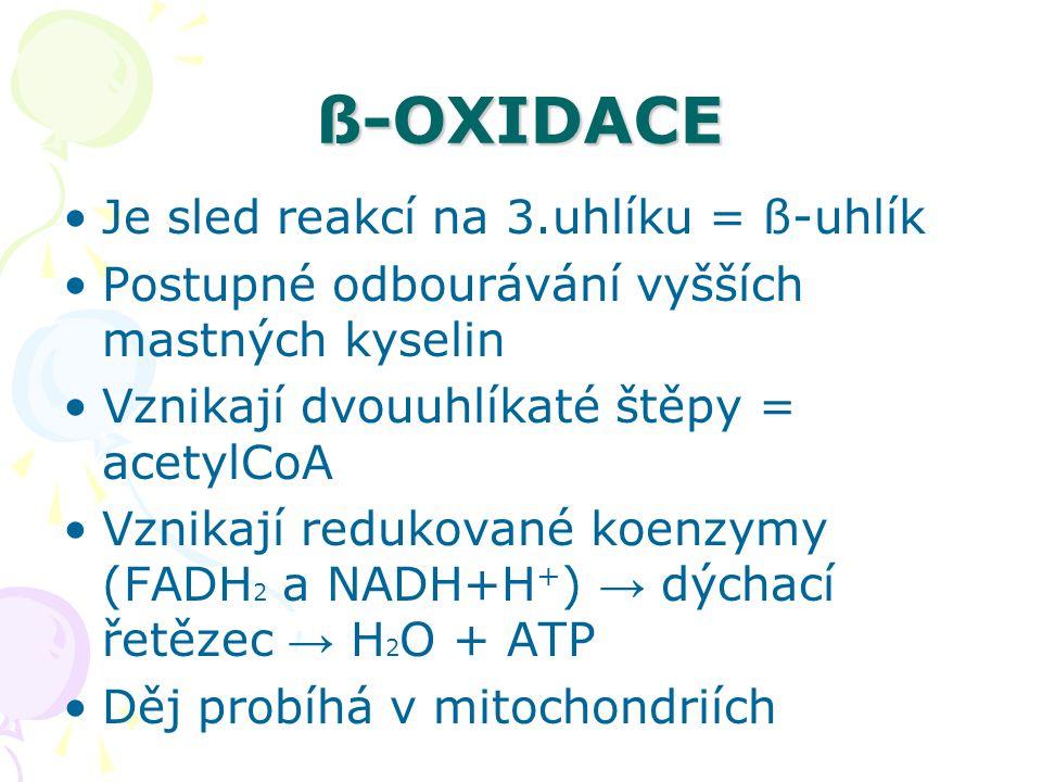 ß-OXIDACE Je sled reakcí na 3.uhlíku = ß-uhlík Postupné odbourávání vyšších mastných kyselin Vznikají dvouuhlíkaté štěpy = acetylCoA Vznikají redukova