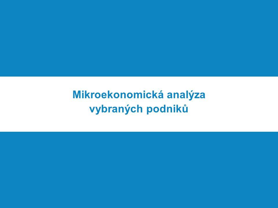 Mikroekonomická analýza vybraných podniků