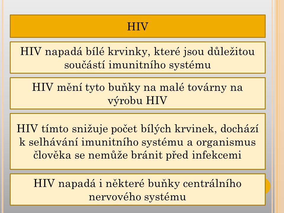 HIV HIV napadá bílé krvinky, které jsou důležitou součástí imunitního systému HIV mění tyto buňky na malé továrny na výrobu HIV HIV tímto snižuje počet bílých krvinek, dochází k selhávání imunitního systému a organismus člověka se nemůže bránit před infekcemi HIV napadá i některé buňky centrálního nervového systému